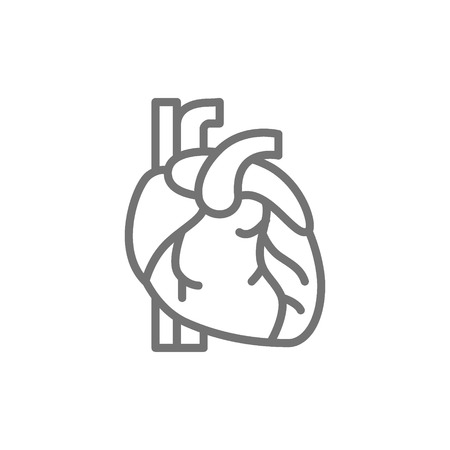 Vector heart, artery, vein, human organ line icon. Symbol and sign illustration design. Isolated on white background Illustration
