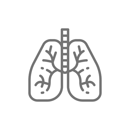 Lungs, human organ line icon.