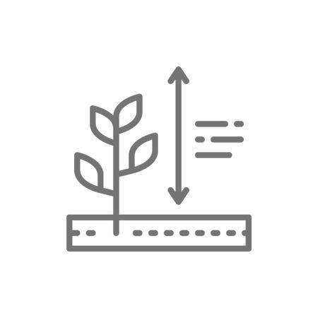 Vector plants growing, plant height line icon. Çizim