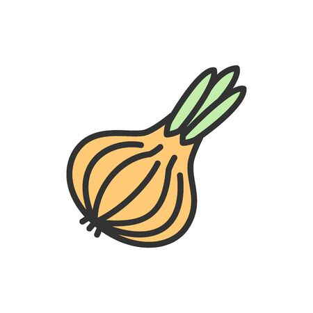 Vector onion, vegetable flat color line icon. Symbol and sign illustration design. Isolated on white background