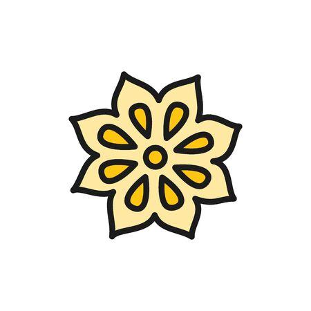 Vektor Badian Körner flache Farbsymbol. Symbol- und Zeichenillustrationsdesign. Isoliert auf weißem Hintergrund Vektorgrafik