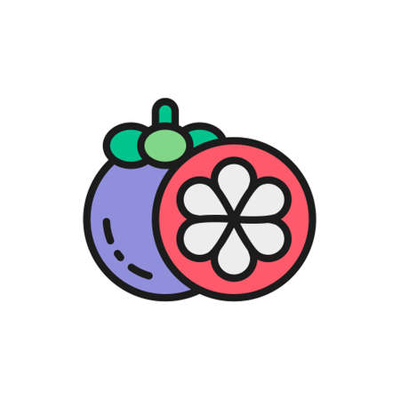 Vector mangosteen, tropical fruit, exotic food flat color line icon. Symbol and sign illustration design. Isolated on white background