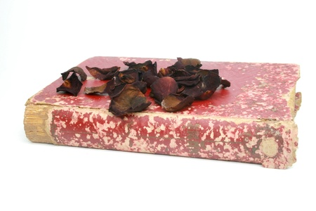 sere: dead rose on old book isolated