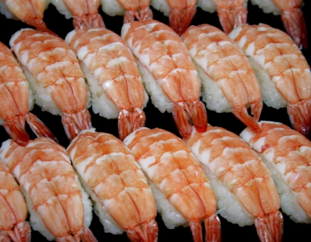 Sushi shrimp photo