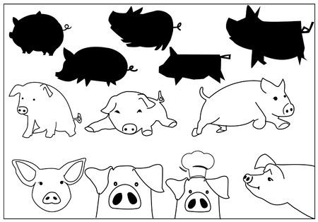 Vector illustration of Pig Design Illustration