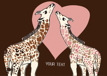 giraffes in love with place for your text  Vector