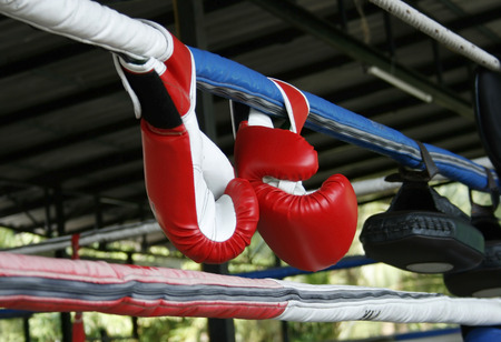 boxing equipment: A pair of Muay Thai boxing gloves