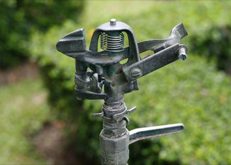 deliverable: water springer on ground in garden