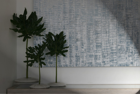 Coconut leaf on wall background Stock Photo