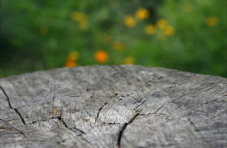 wooden country table top against a blurred background photo