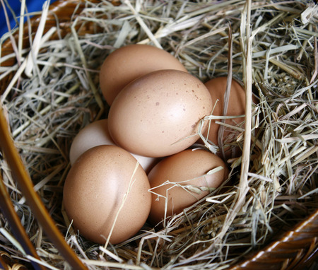 Brown eggs in wooden basket hay nest photo