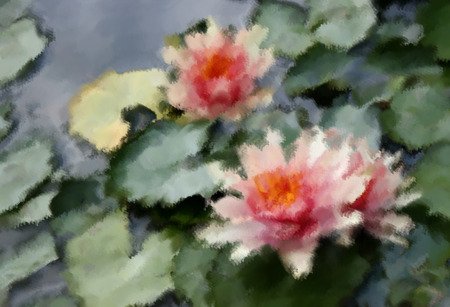 Oil painting beautiful waterlily or lotus flower photo