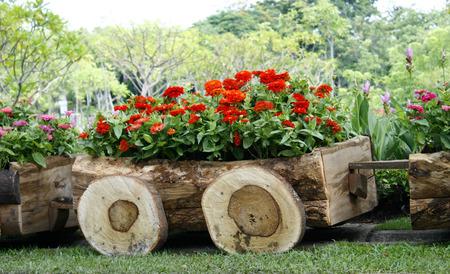 Bloemen in potten in houten doos op de achtergrond van de tuin