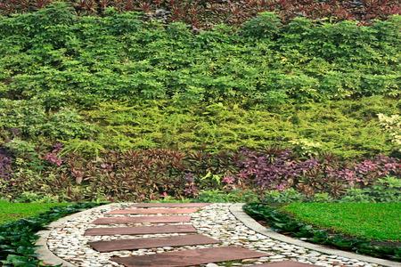 Flores y plantas de pared jardín vertical Foto de archivo - 34743520