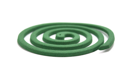 insectiside: Close up Mosquito coil isolated on white background