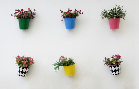 onto: colorful flowers pots hang onto the wall
