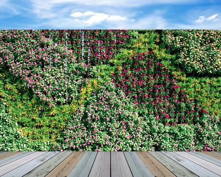Jardín de la pared vertical con flores Foto de archivo - 38468955