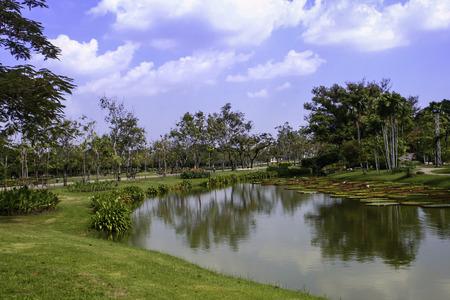 landscape garden: Outdoor landscape garden with pond Stock Photo