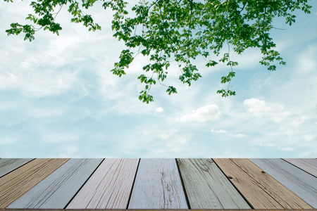 wooden floor with green leaves and sky background photo