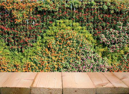 Flores y plantas de pared jardín vertical Foto de archivo - 42063785