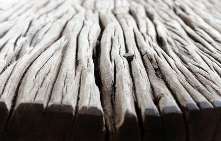 bark: Old wood floor background Stock Photo
