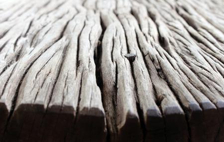 roble arbol: Viejo fondo del piso de madera Foto de archivo