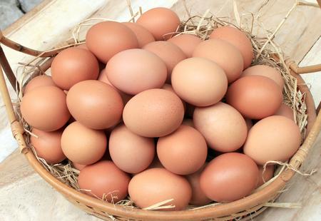 huevo blanco: Huevos  Cesta con los huevos en la paja