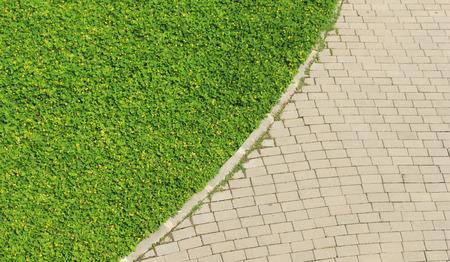 weed block: Weed growing on Brick Road. Background texture
