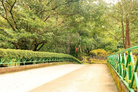 pedestrian bridge: Pedestrian Bridge surrounded by trees Stock Photo