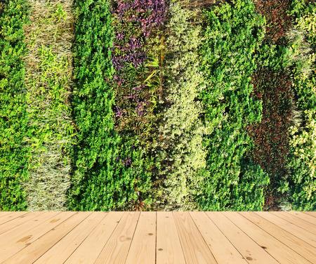 green wall: flower wall vertical garden and wood floor