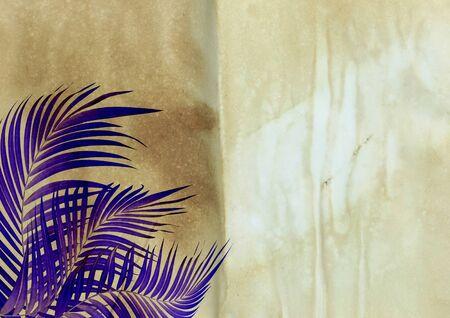 desperado: old paper background with palm leaf : tone vivid light
