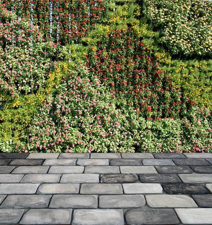 piso piedra: pared de la flor del jardín vertical y suelo de piedra Foto de archivo