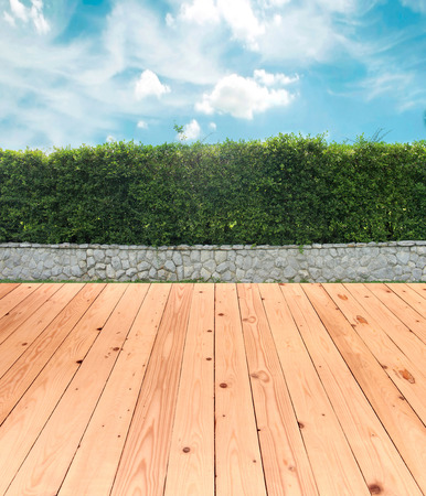 ornamental shrub: brick wall and ornamental shrub with wood floor