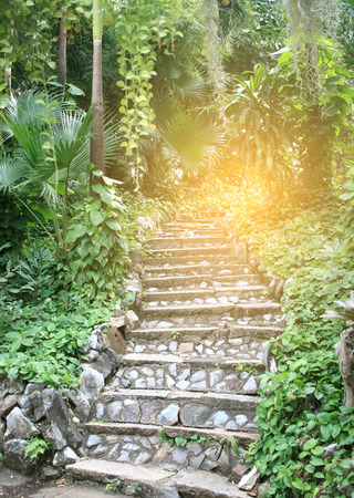 retain: Natural stone stairs landscaping in garden with burst light