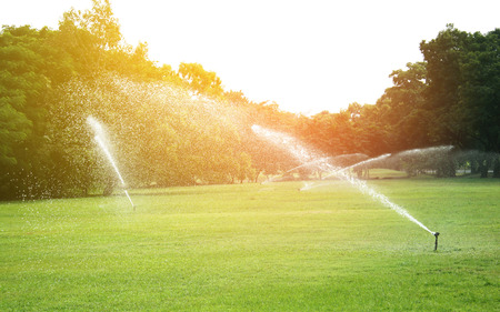 sprinkler head watering the grass in garden with burst light