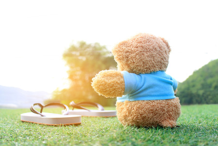 someone: Teddy bear sitting on the grass with burst sunrise light ,dream soft style. Concept about love and waiting for someone. Stock Photo