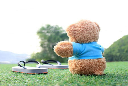 someone: Teddy bear sitting on the grass . Concept about love and waiting for someone. Stock Photo