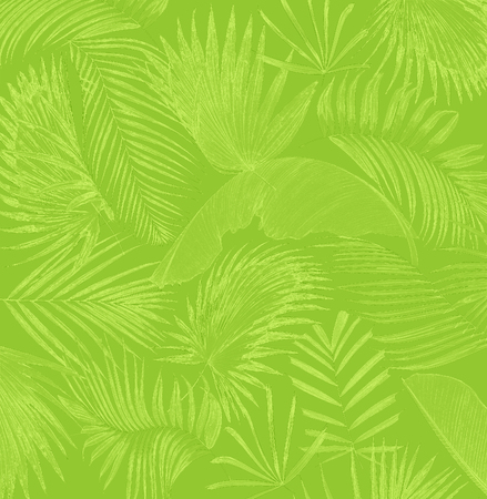 mix palm leaf tree background Stock Photo