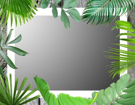 green botanical tropical palm leaves frame background