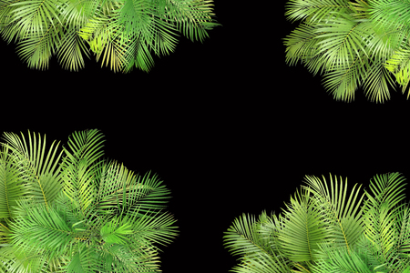 top view palm leaves tree for summer background Banco de Imagens - 122695381