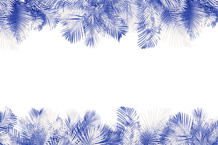 top view palm leaves tree for summer background Banco de Imagens - 122695391