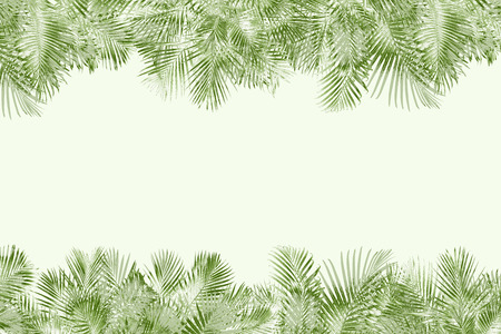 top view palm leaves tree for summer background Banco de Imagens - 122695393