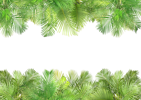 top view palm leaves tree for summer background Banco de Imagens - 122695394