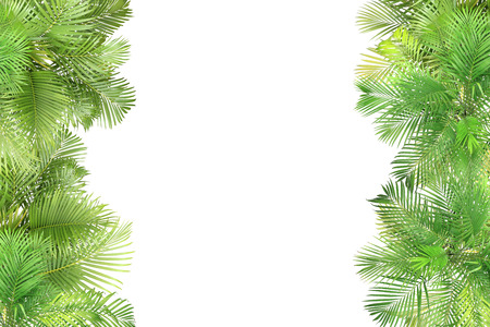 top view palm leaves tree for summer background Banco de Imagens - 122695396