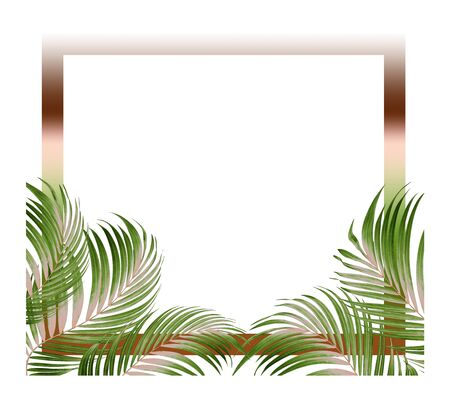 frame picture with green leaf of palm tree background