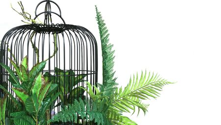 colorful flower and green paln leaves in cage hanging decoration