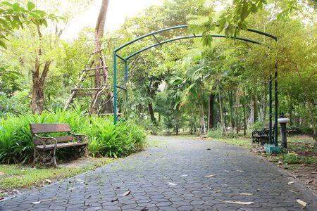 bench in the public garden park
