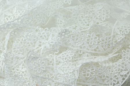 isolated White lace flowers line Stock Photo - 14241487