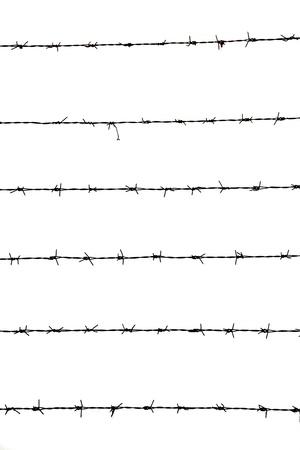 najechać: Drut kolczasty na białym tle