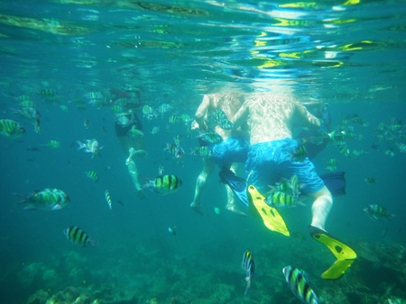 people and fishs Underwater at andaman sea thailand photo